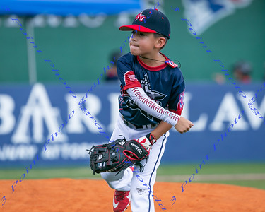 AA Machine Pitch Tournament - June 9,2019