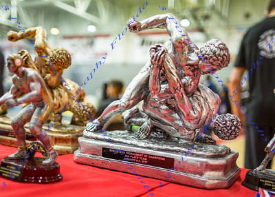 25th Annual Ron Peter's Tournament of Champions - Jan 6th & 7th