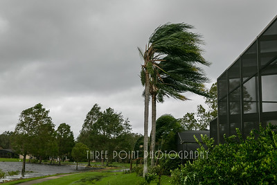 Hurricane Irma Aftermath