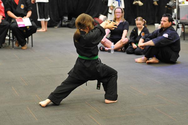 WKF Martial Arts Convention 2010