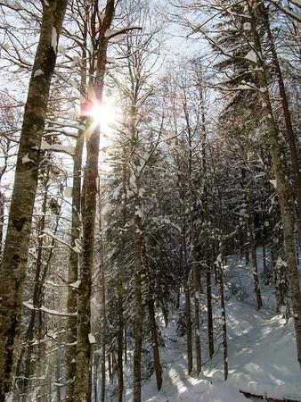 Hiking out of the Breitachklamm   Oberstdorf, Bayern Germany