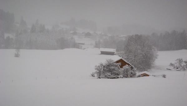 It was really QUITE snowy during our afternoon walk   Rettenberg, Bayern Deutschland