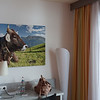 How fitting, a cow portrait in the room | Oberstdorf, Germany