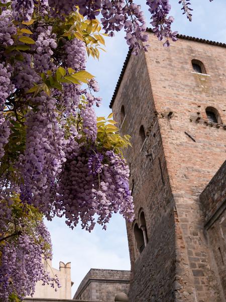 Group trip to Abano Terme