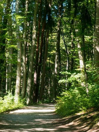 Ride around Starnberger See