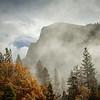 foggy dome