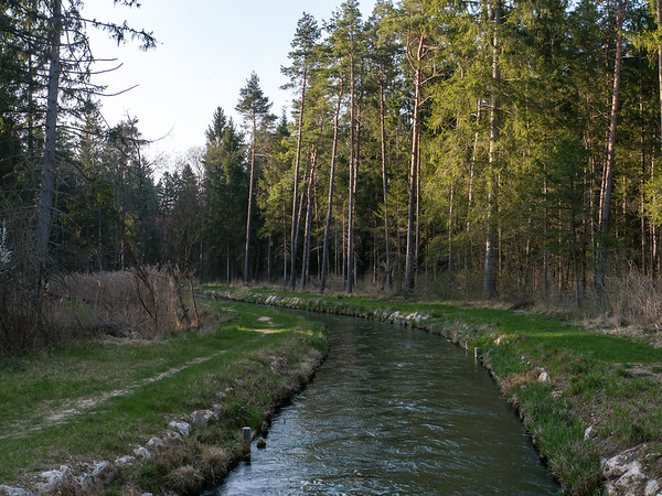 This canal-crossing is on our typical forest tour | Augsburg, Bayern Deutschland