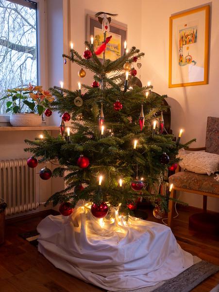 Our tree, 2018 | Augsburg, Bayern, Deutschland