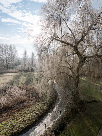 A frosty winter morning | Augsburg, Bavaria, Alemania
