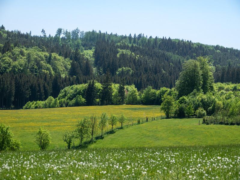 The fields near Engelshof | Gessertshausen, Bayern, Deutschland