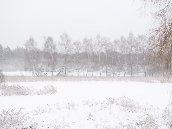 First big snow of the new year | Augsburg, Bayern, Deutschland