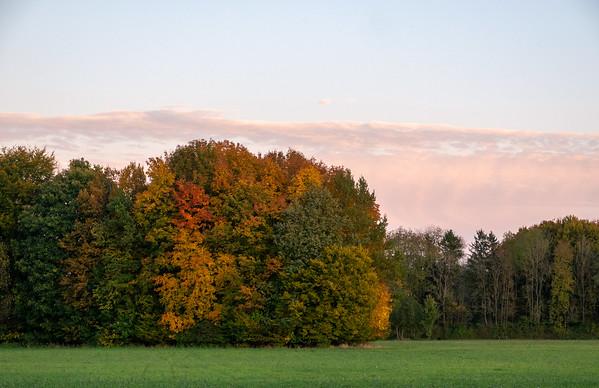Fall bike ride near home | Augsburg, Bayern, Deutschland