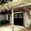 Here's the wisteria. IT had to come down when the one car garage made way for the 2 car garage that is there now