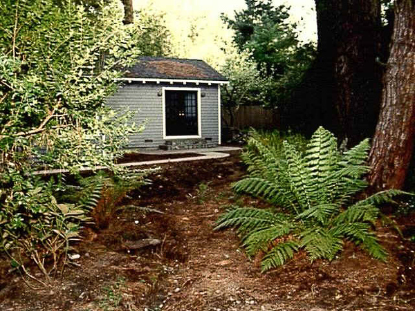 "Early, early pic (Sony Mavica!) of the bedroom (was a studio), pine trees, ""forest backyard"""