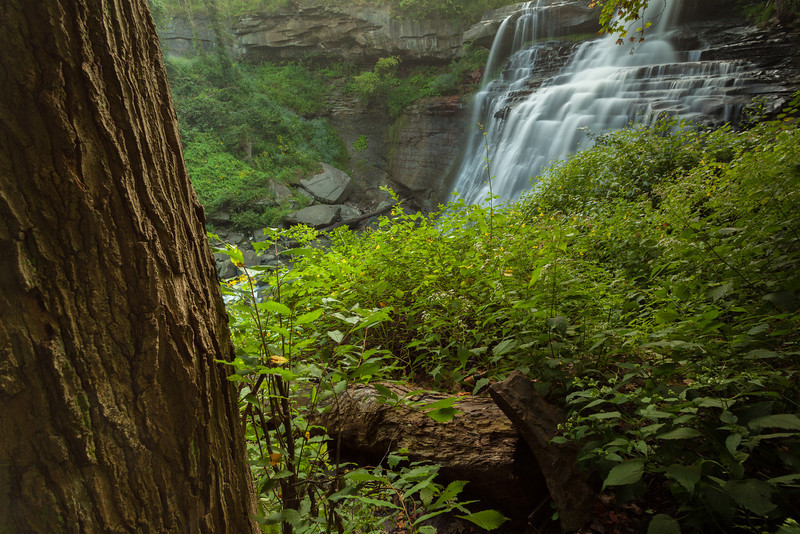 Cuyahoga National Park - Aug302013_0171