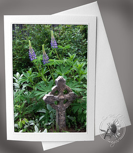 Celtic Cross and Lupine