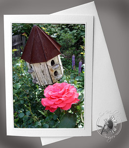 Birdhouse and Rose