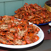 Crawfish - LOTS of crawfish