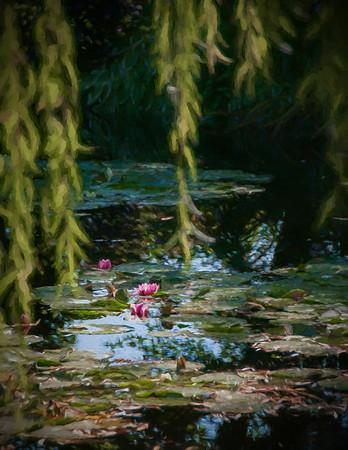 Monet Giverney