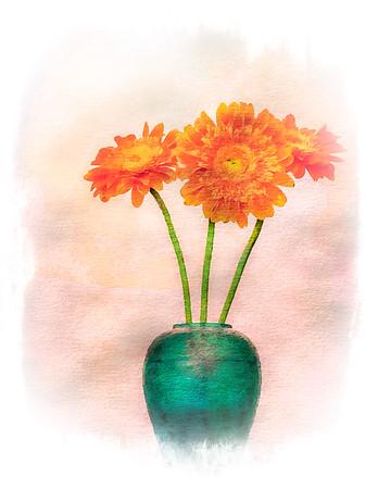 Painted Orange Gerbera's