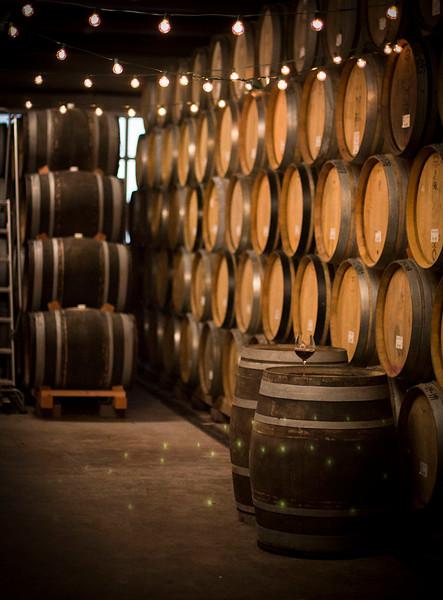 Barrel cellar at Brooks Winery_127