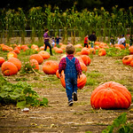 Children at the Pumpkin Patch : Us and the Coleman's having a blast at the pumpkin patch at Bate's Nut Farm... you've just gotta