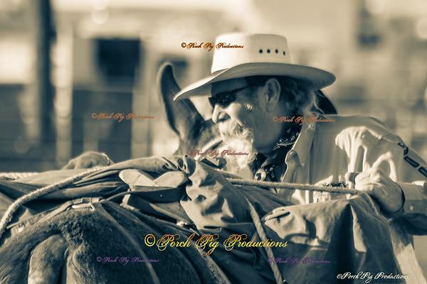 Bishop Mule Days 2014