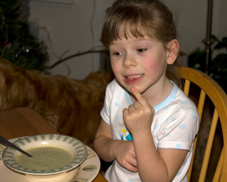 Chloe is pondering whether to eat her Zuchini Soup or face the consequences of going to bed for a mid-afternoon nap.  She chose the soup and finished it. (It's great stuff with the sausage and seasoning.)  Christmas Day, 2011.