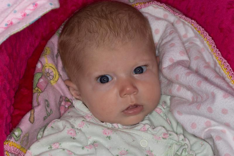 Casey Moedl's baby Paisly. July 12,2013. Island park, Idaho
