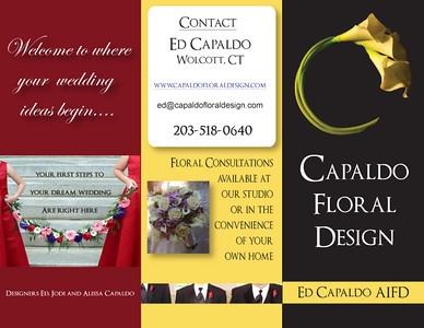 brochure back to print