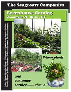 Greenhouse Catalogue cover