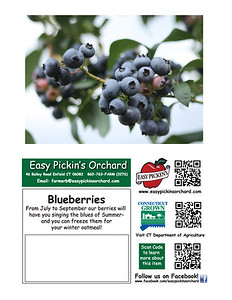 cards EZP blueberries