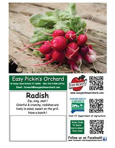 cards EZPradish