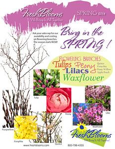 Spring Newsletter 3