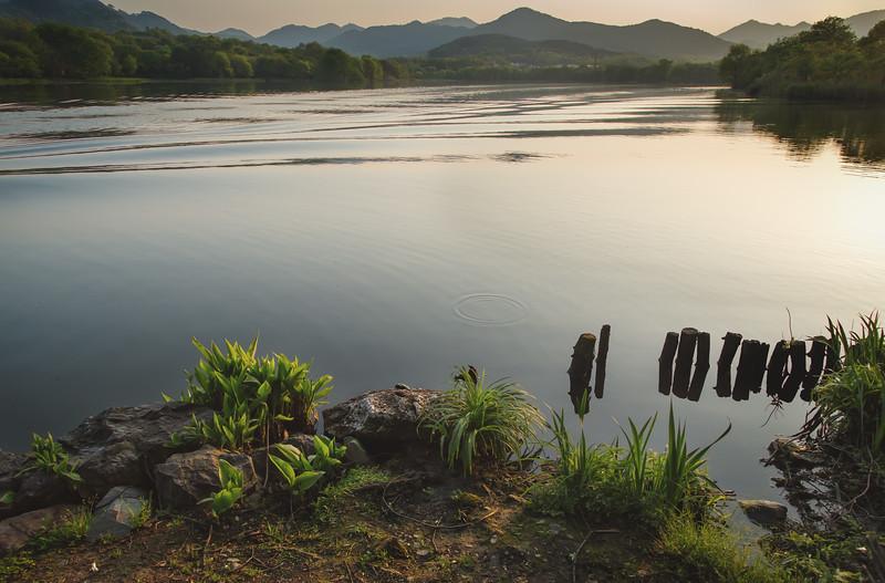 Sunny West Lake