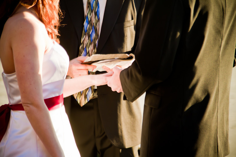 Tracy and Ian's Wedding-301
