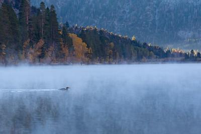 Silver Lake, June Lake, CA