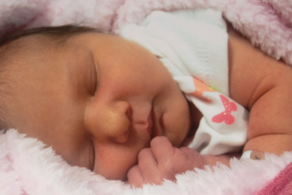 Rosalie at 3 days old.