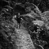Down the Track - Poppa's Bushwalk