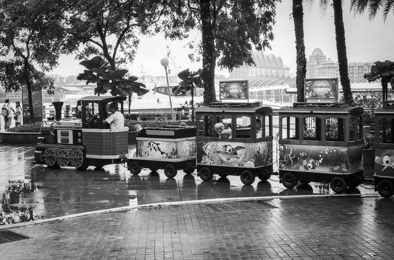 Train in the Rain