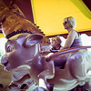 Donkey Ride