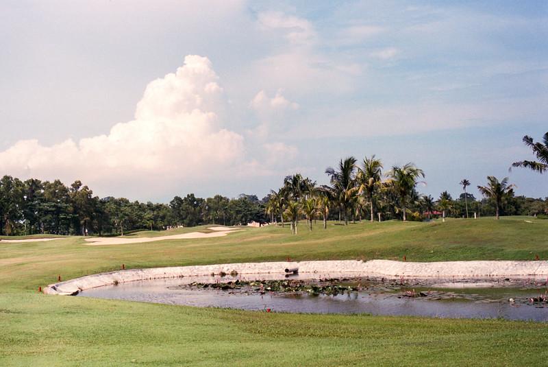 9th Fairway - Palm Course