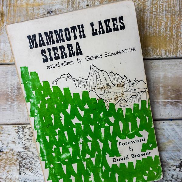 mammoth-lakes-sierra-5294.jpg