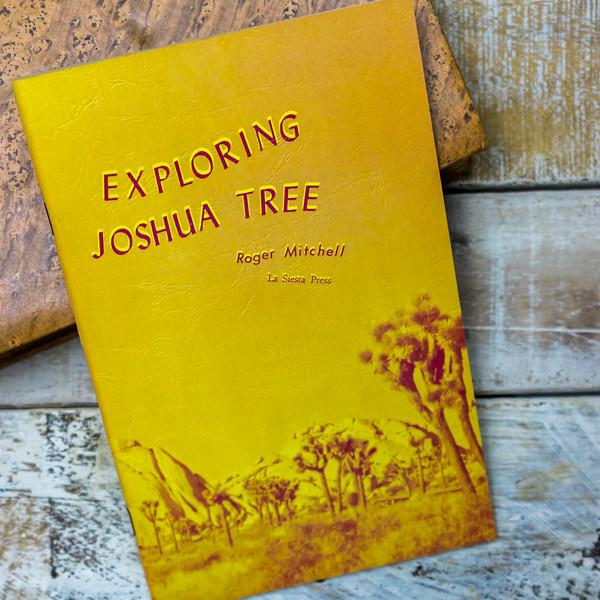 exploring-joshua-tree-5418.jpg