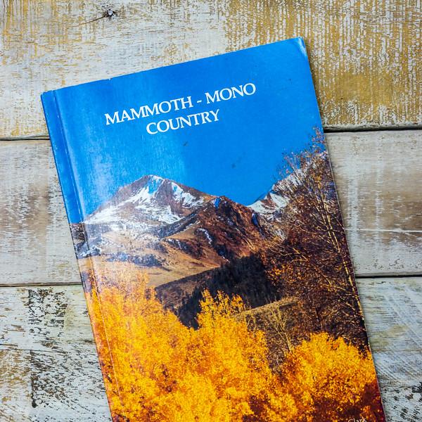 mammoth-mono-country-5382.jpg