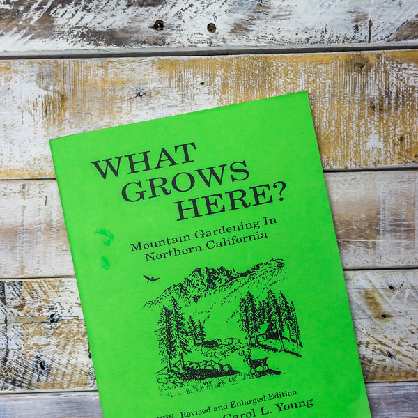 what-grows-here-5389.jpg