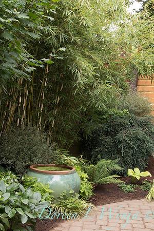 Alyse's Garden_110