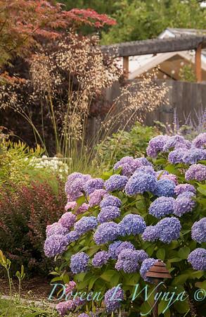 Ann Nickerson - Ann's garden_404