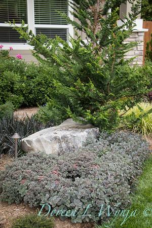 David West - Meyer garden_102