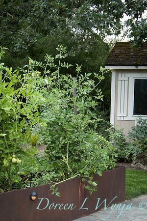 David West - Meyer garden_107
